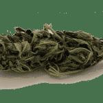 The Good Budz CBD Hemp Flower | Cotton Kush