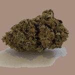 The Good Budz CBD Flower UK | Harlequin 3.0