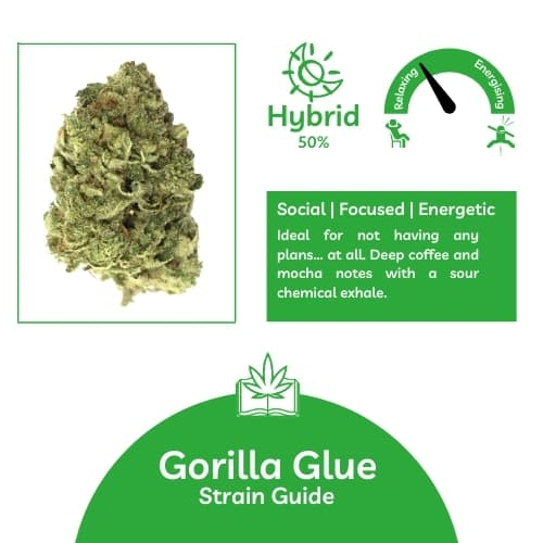 Gorilla Glue Info