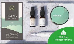 CBD ONE (Our Honest Review – April 2021 Update)