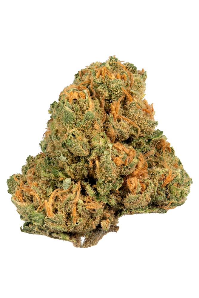 Jack Herer Cannabis Strain Information