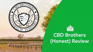 CBD Brothers Review (Our Honest Review)