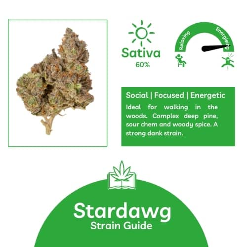 Stardawg UK Strain