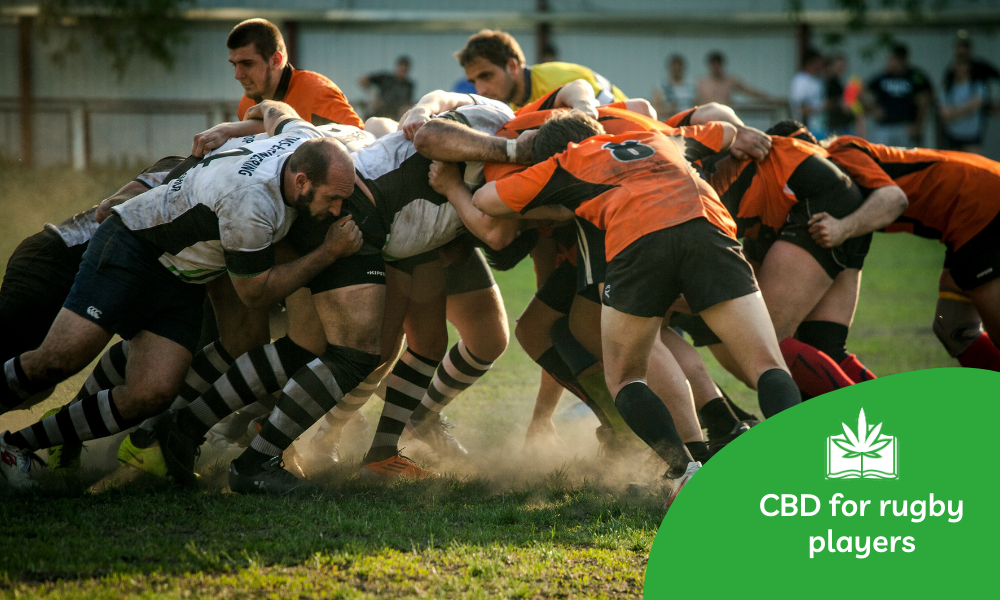 CBD for rugby players