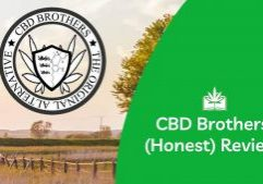 CBD Brothers Review