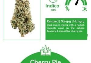 Cherry Pie Information